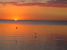 Sunset from Frankston Beach in May 2005 showing sun sinking below horizon, bright orange sky with some cloud, reflected in an almost smooth sea with two flying birds in silhouette and reflected in the water.